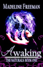 Awaking Book Cover