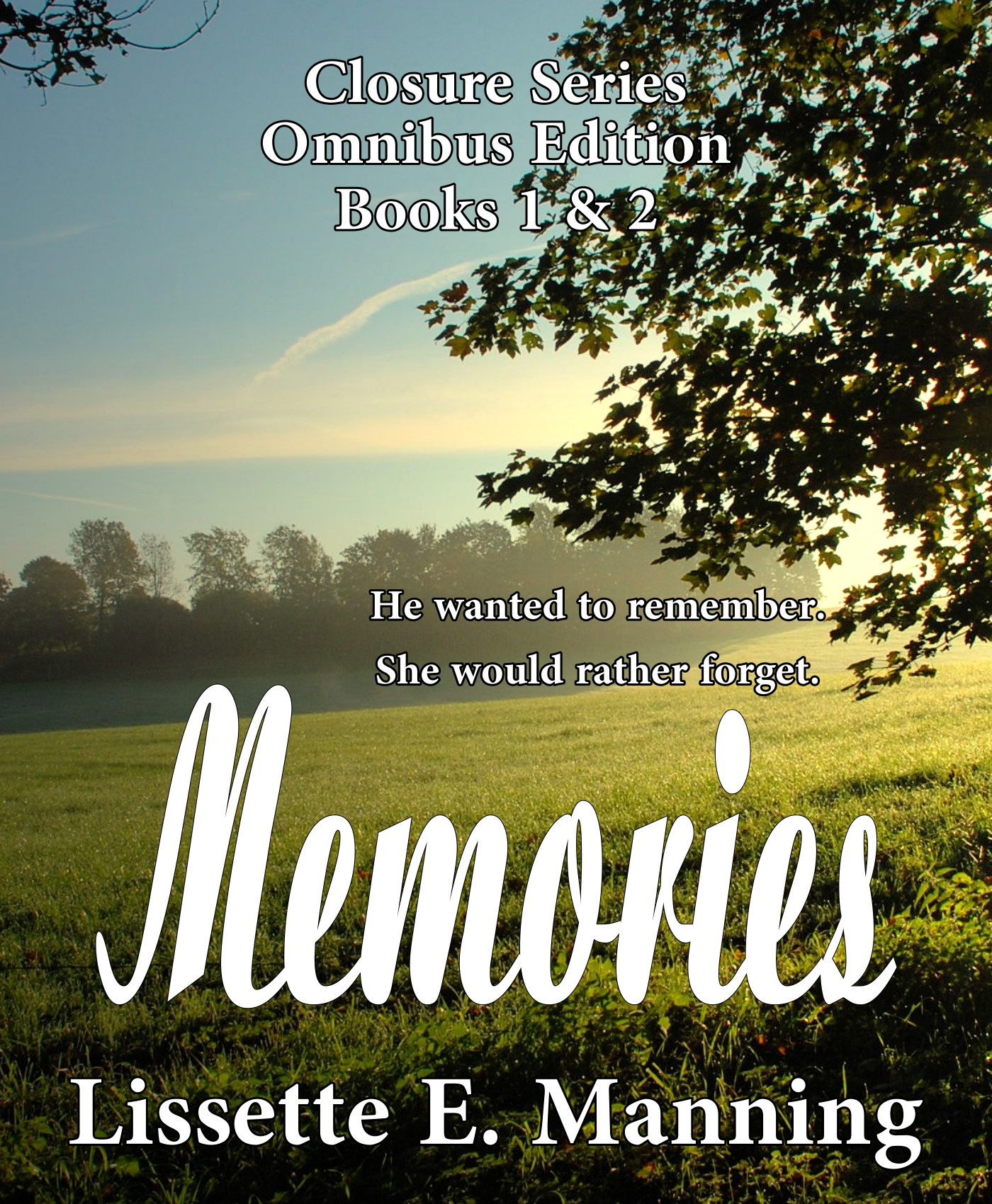 Memories Temp Cover